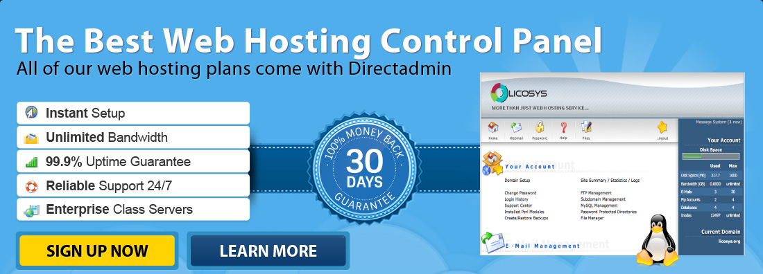 Directadmin is the most popular web hosting control panel